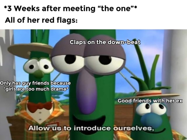 *3 Weeks after meeting the one * All of her red flags Claps on the down beat Only has guy friends because girls are too much drama* Good friends with her ex OS Allow us to introduce ourselves, meme