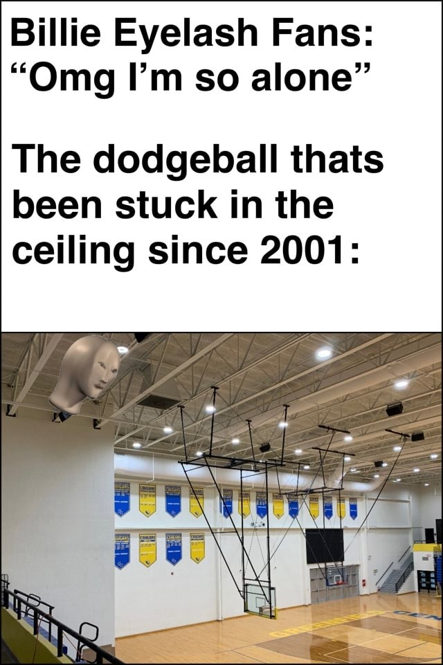 Billie Eyelash Fans  Omg I'm so alone The dodgeball thats been stuck in the ceiling since 2001 memes