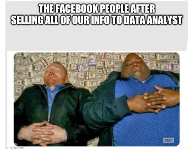 THE FACEBOOK PEOPLE AFTER SELLING ALL OF OUR INFO TO DATA ANALYST memes