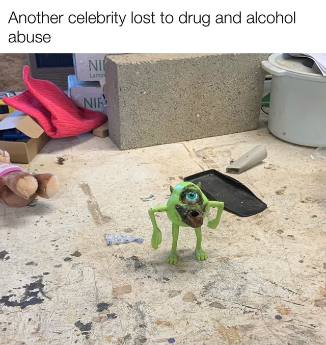 Another celebrity lost to drug and alcohol abuse meme