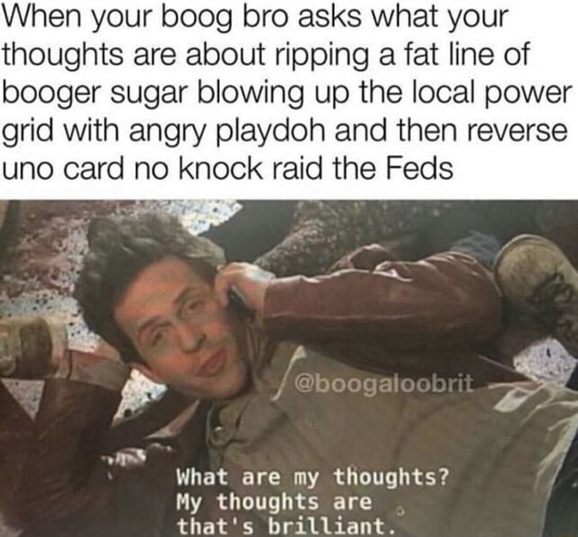 When your boog bro asks what your thoughts are about ripping a fat line of booger sugar blowing up the local power grid with angry playdoh and then reverse uno card no knock raid the Feds What are my thoughts My thoughts are that's brilliant meme