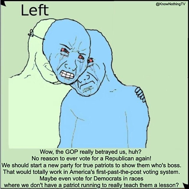 Wow, the GOP really betrayed us, huh No reason to ever vote for a Republican again We should start a new party for true patriots to show them who's boss. That would totally work in America's first past the post voting system. Maybe even vote for Democrats in races where we do not have a patriot running to really teach them a lesson meme
