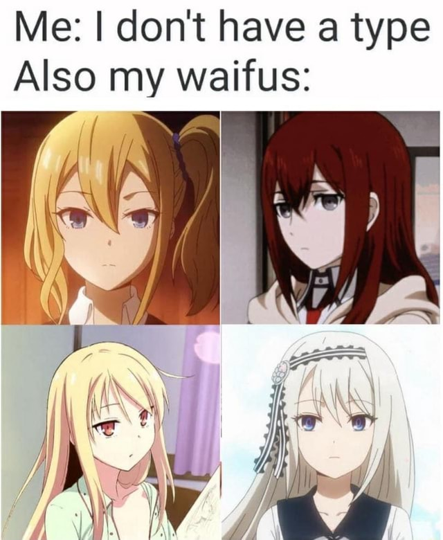 Me do not have a type Also my waifus IN memes
