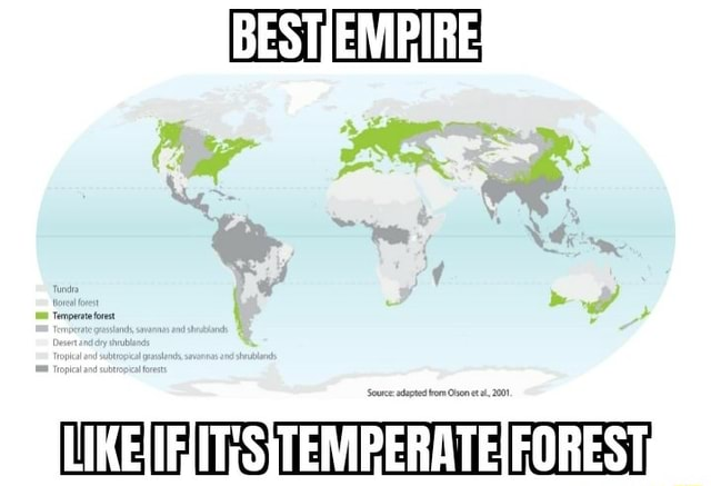 Temperate forest Ti memes