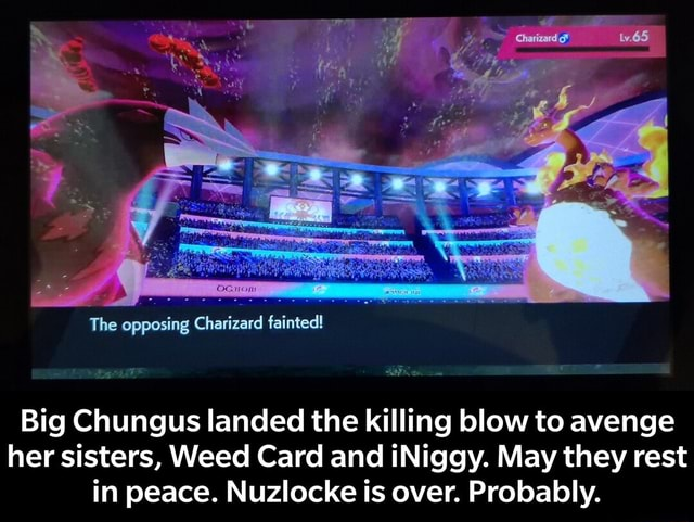 The opposing Charizard fainted Big Chungus landed the killing blow to avenge her sisters, Weed Card and iNiggy. May they rest in peace. Nuzlocke is over. Probably. Big Chungus landed the killing blow to avenge her sisters, Weed Card and iNiggy. May they rest in peace. Nuzlocke is over. Probably memes