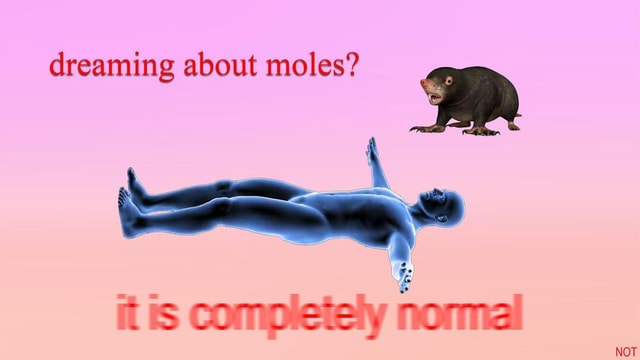 Dreaming about moles RR NOT memes