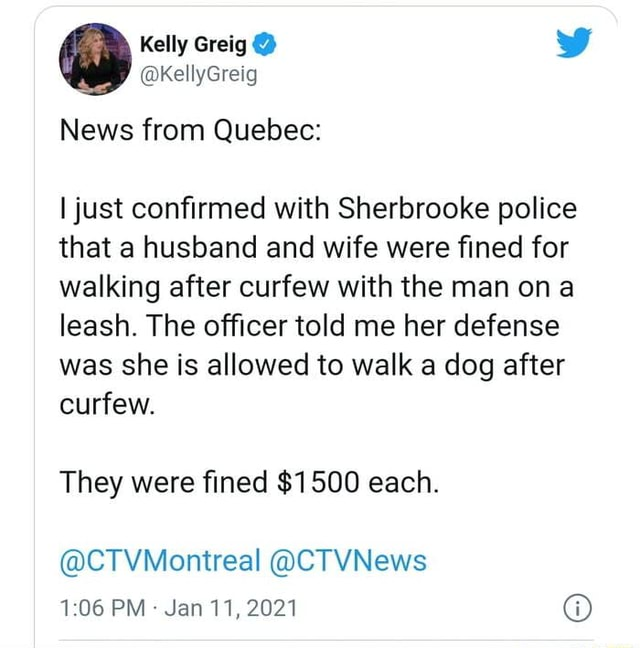 Kelly Greig kKellyGreig News from Quebec I just confirmed with Sherbrooke police that a husband and wife were fined for walking after curfew with the man on a leash. The officer told me her defense was she is allowed to walk a dog after curfew. They were fined $1500 each. CTVMontreal CTVNews PM Jan 11, 2021 meme