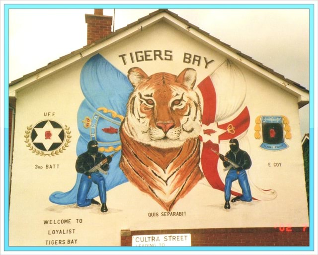 CoY QUIS SEPARABIT WELCOME TO LOYALIST TIGERS BAY CULTRA STREET memes