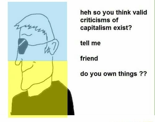 Heh so you think valid criticisms of capitalism exist tell me friend do you own things 77 memes