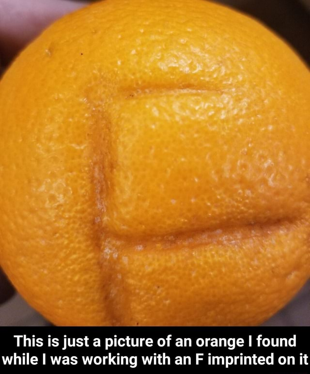 This is just a picture of an orange I found while I was working with an F imprinted on it  This is just a picture of an orange I found while I was working with an F imprinted on it memes