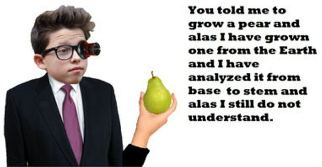 You told me to grow a pear and alas I have grown one from the Earth and I have analyzed it from base to stem and alas I still do not understand memes