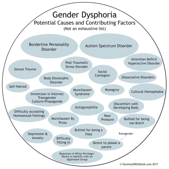 Gender Dysphoria Potential Causes and Contributing Factors Not an exhaustive list Borderline Personality Autism Spectrum Disorder Disorder Attention Deficit Post Traumatic Hyperactive Disorder Stress Disroder Sexual Trauma Social Body Dismorphic Contagion Dissociative Disorders Disorder Self Hatred Munchausen Cultural Homophobia Immersion in Internet Syndrome Transgender Discomfort with Autogynephilia Developing Body Difficulty accepting Homosexual Feelings Peer Munchausen By Pressure Bullied for being Proxy too Butch Bullied for being a Depression and Sissy Transgender Anxiety Difficulty fitting in Desire to please a parent Rejection of White Privilege Desire to Identify with an Oppressed Group 2017 meme