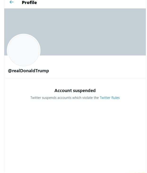 RealDonaldTrump Account suspended Twitter suspends accounts which violate the Twitter Rules memes