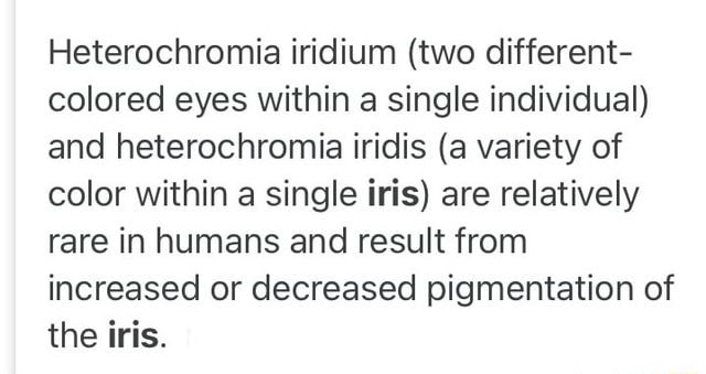 Heterochromia iridium two different colored eyes within a single individual and heterochromia iridis a variety of color within a single iris are relatively rare in humans and result from increased or decreased pigmentation of the iris memes