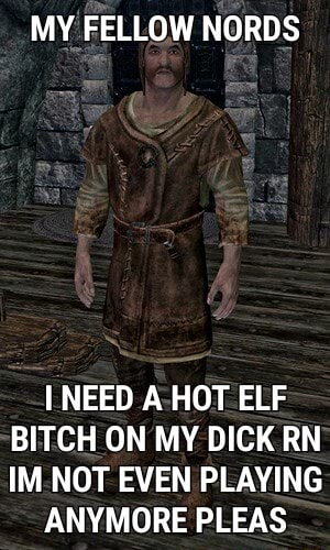 MY FELLOW NORDS NEED A HOT ELF BITCH ON MY DICK RN IM NOT EVEN PLAYING ANYMORE PLEAS memes