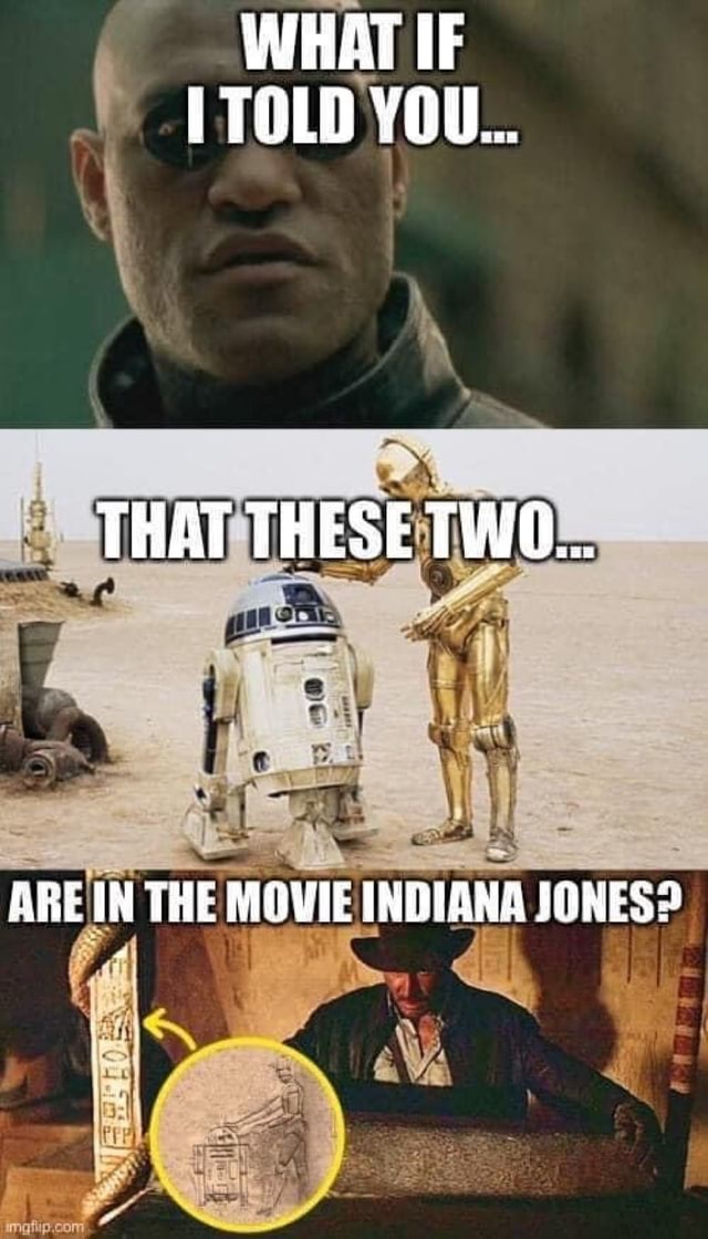 WHAT IF TOLD YOU THAT THESE TWO ARE IN THE MOVIE INDIANA JONES meme