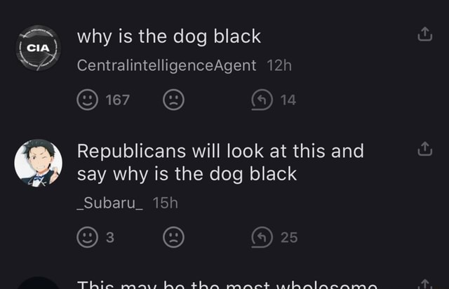 Why is the dog black cia CentralintelligenceAgent 14 Republicans will look at this and say why is the dog black 25 Subaru meme