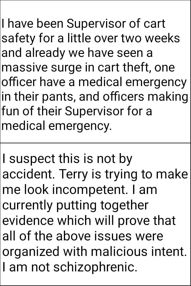 I have been Supervisor of cart safety for a little over two weeks and already we have seen a massive surge in cart theft, one officer have a medical emergency in their pants, and officers making fun of their Supervisor for a medical emergency. I suspect this is not by accident. Terry is trying to make me look incompetent. I am currently putting together evidence which will prove that all of the above issues were organized with malicious intent. am not schizophrenic memes