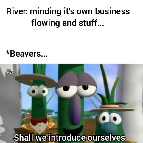River minding it's own business flowing and stuff *Beavers Shall we introduce ourselves memes