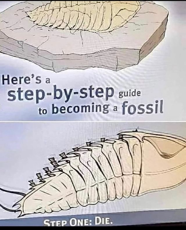 Here's a Site guide to becoming fossil Grep ONE DIE memes