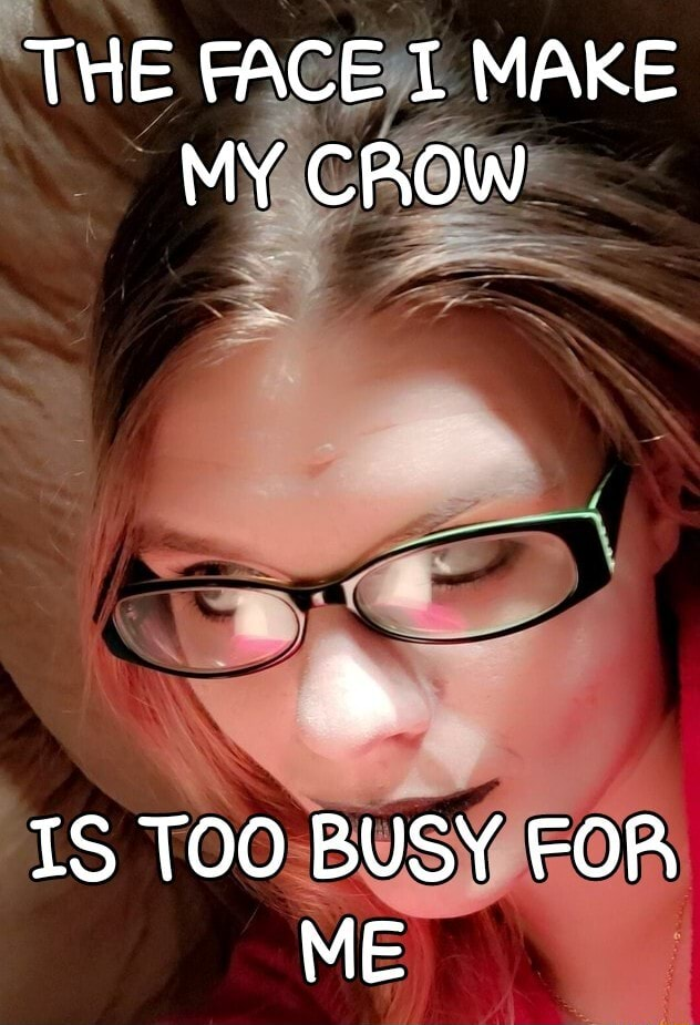 THE FACE I MAKE MY CROW IS TOO BUSY FOR ME memes