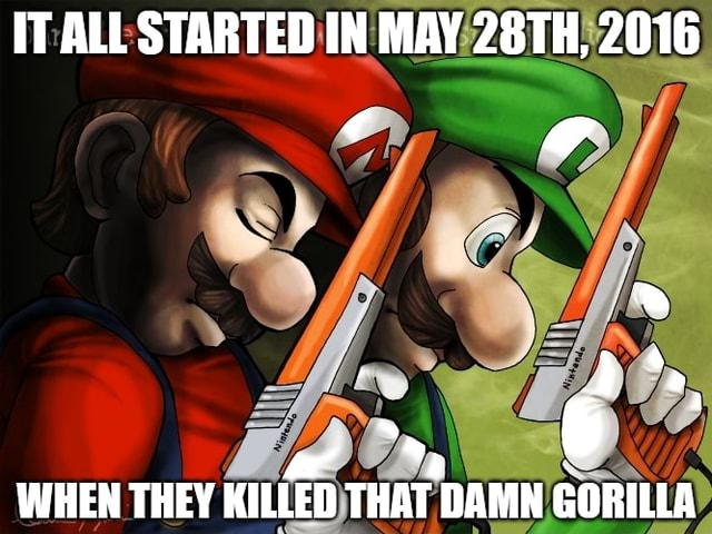 IT ALL STARTED IN MAY 28TH, 2016 6 a WHEN THEY KILLED THAT DAMN GORILLA memes