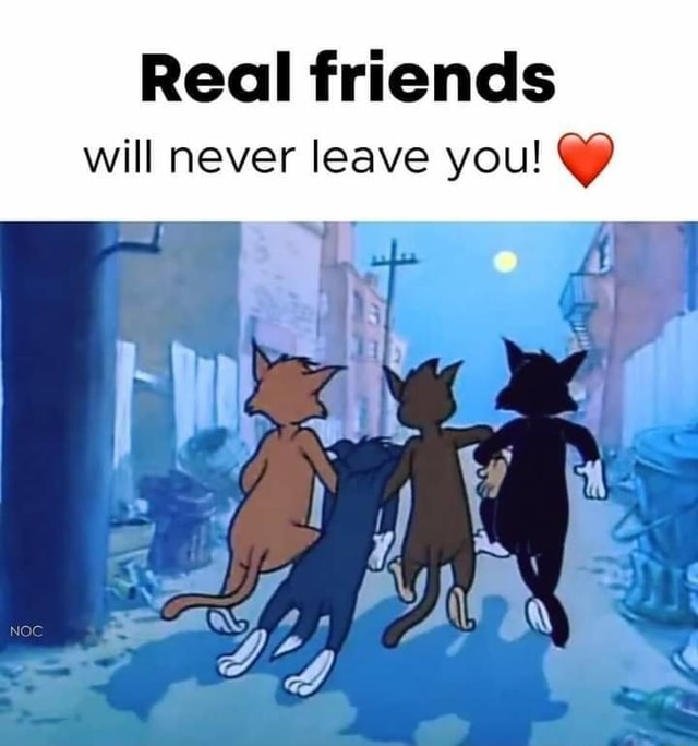 Real friends will never leave you meme