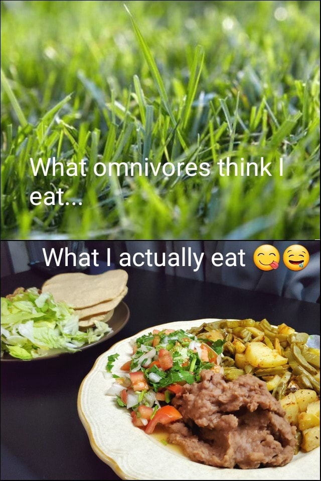 What omnivores think I eat What I actually eat meme
