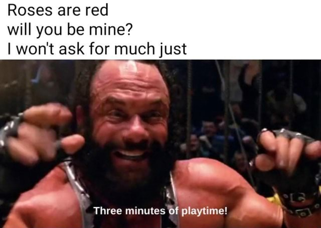 Roses are red will you be mine I won't ask for much just Three minutes of playtime meme