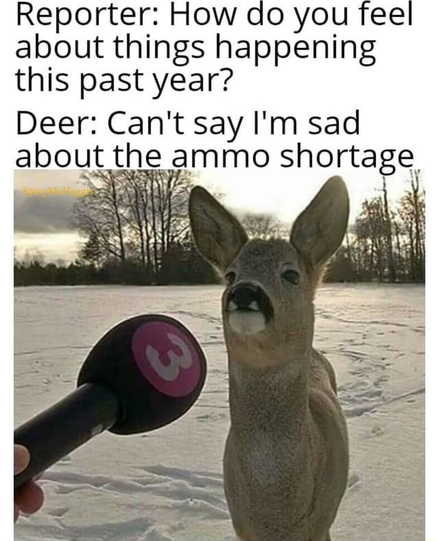 Reporter How do you feel about things happening this past year Deer Can't say I'm sad about the ammo shortage memes