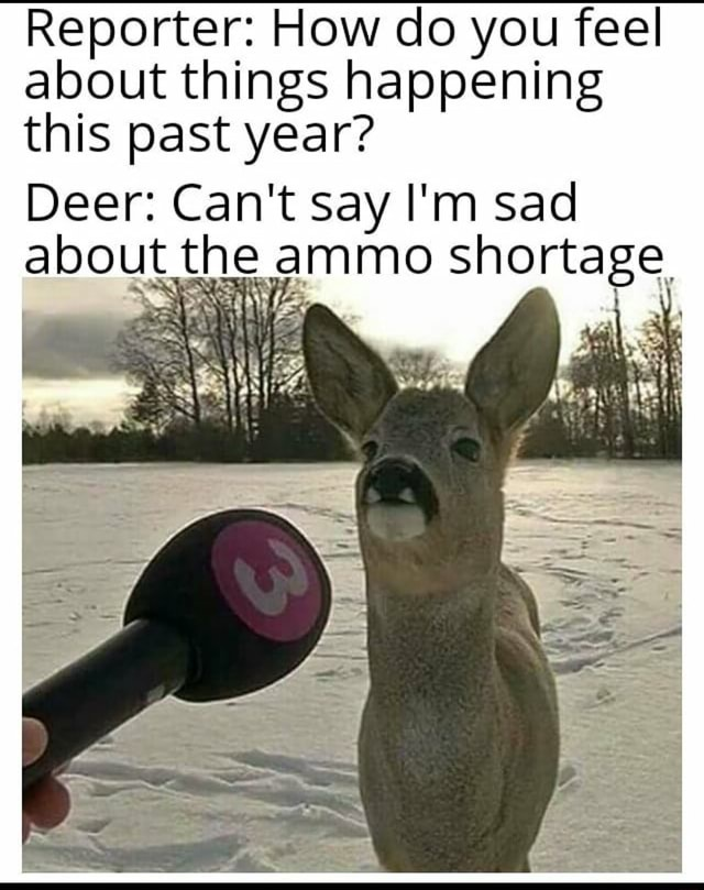 Reporter How do you feel about things happening this past year Deer Can't say I'm sad about the ammo shortage, memes