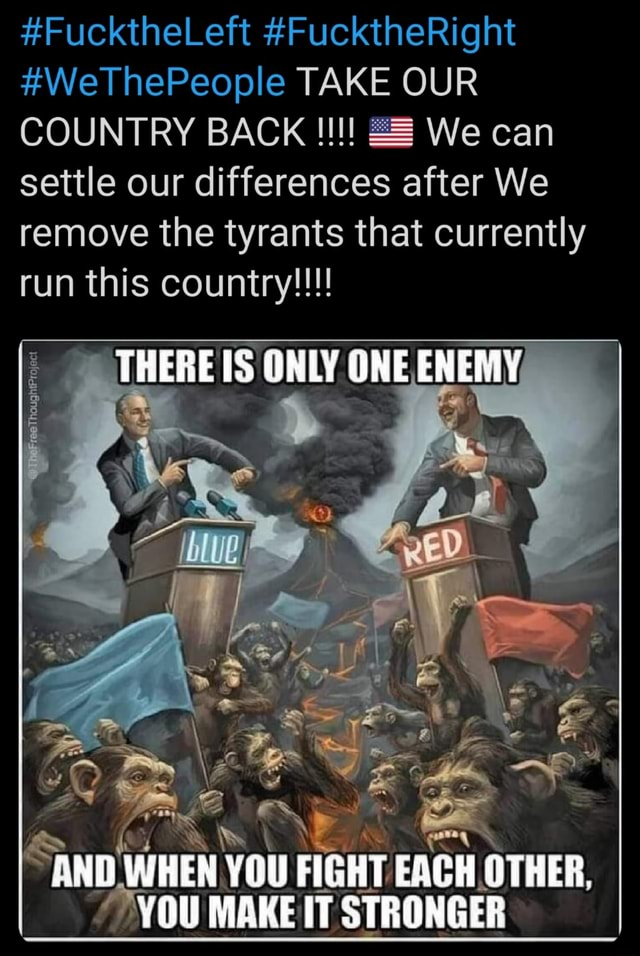 FucktheLeft FucktheRight WeThePeople TAKE OUR COUNTRY BACK We can settle our differences after We remove the tyrants that currently run this country THERE IS ONLY ONE ENEMY TS AND WHEN YOU FIGHT OTHER, MALE meme