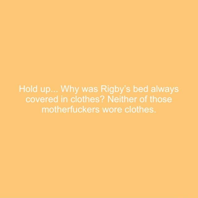 Hold up Why was Rigby's bed always covered in clothes Neither of those motherfuckers wore clothes meme