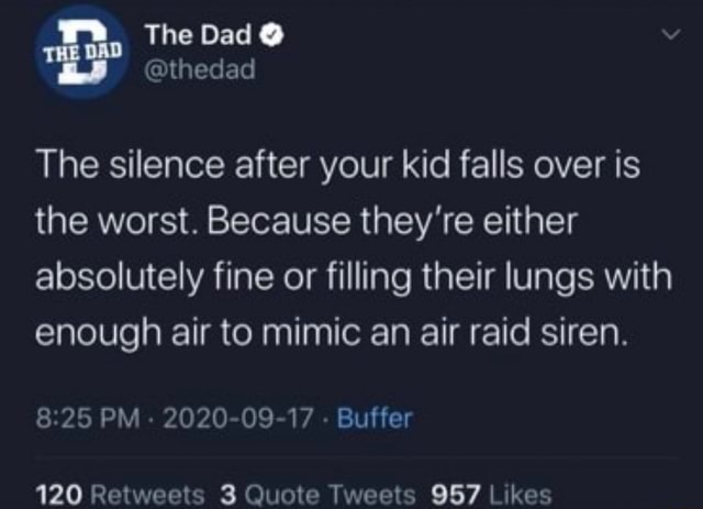 The Dad hedad The silence after your kid falls over is the worst. Because they're either absolutely fine or filling their lungs with enough air to mimic an air raid siren. PM 2020 09 17 Buffer 120 meme