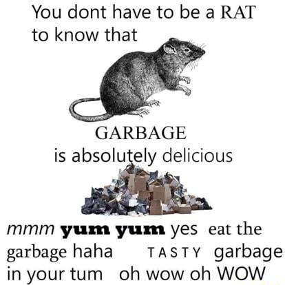 You dont have to be a RAT to know that GARBAGE is delicious mmm yam yum yes eat the garbage haha TASTY garbage in your tum oh wow oh WOW meme