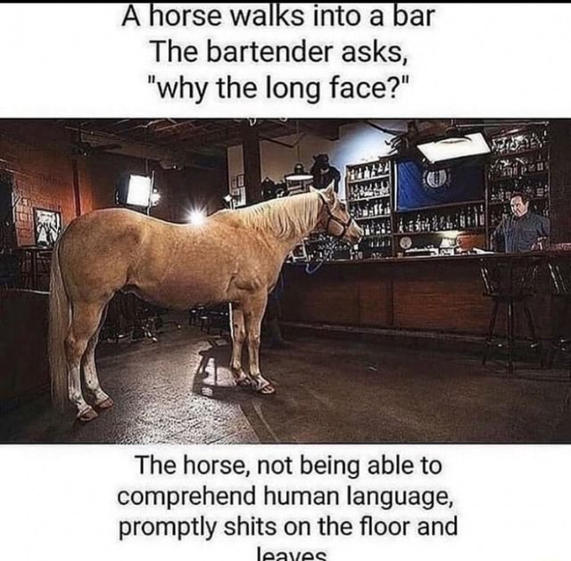 Walks bar The bartender asks, why the long face The horse, not being able to comprehend human language, promptly shits on the floor and memes