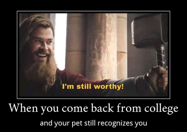I'm still worthy When you come back from college and your pet still recognizes you memes