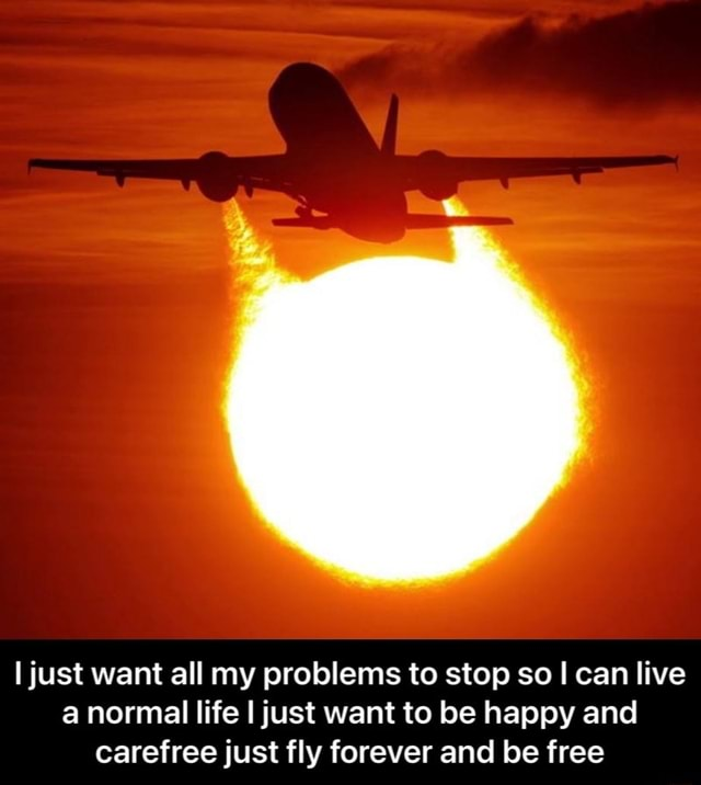 I just want all my problems to stop so can live a normal life I just want to be happy and carefree just fly forever and be free  I just want all my problems to stop so I can live a normal life I just want to be happy and carefree just fly forever and be free memes