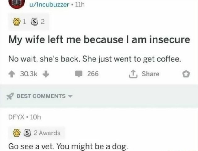 Wy wWlacubuzzer 1 My wife left me because I am insecure No wait, she's back. She just went to get coffee. 303k 266 ct, Share BEST COMMENTS DFYX 2 Awards Go see a vet. You might be a dog memes
