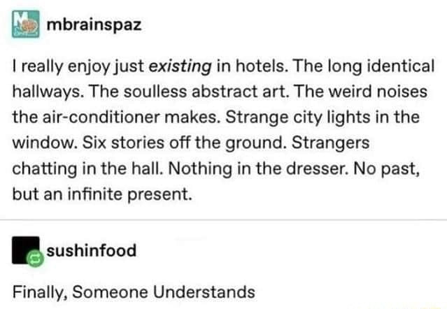 I really enjoy just existing in hotels. The long identical hallways. The soulless abstract art. The weird noises the air conditioner makes. Strange city lights in the window. Six stories off the ground. Strangers chatting in the hall. Nothing in the dresser. No past, but an infinite present. BB sushinfooa Finally, Someone Understands memes