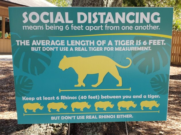 SOCIAL DISTANCING means being 6 feet apart from one another. THE AVERAGE BUT DON'T LENGTH USE REAL OF TIGER A FOR TIGER 6 FEET. BUT DON'T USE A REAL TIGER FOR MI IEASUREMENT. Keep at least 6 Rhinos 40 feet between you and a tiger. BUT DON'T USE REAL RHINOS EITHER.  es memes