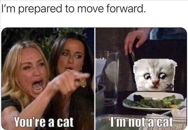 I'm prepared to move forward. ie You're a cat memes