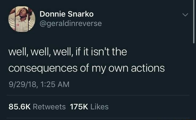 Donnie Snarko well, well, well, if it isn't the consequences of my own actions AM meme