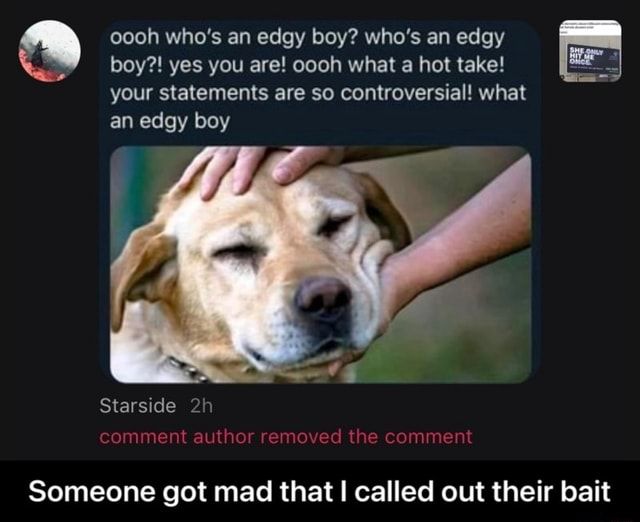 Oooh who's an edgy boy who's an edgy boy  yes you are oooh what a hot take your statements are so controversial what an edgy boy Starside comment author removed the comment Someone got mad that called out their bait  Someone got mad that I called out their bait memes