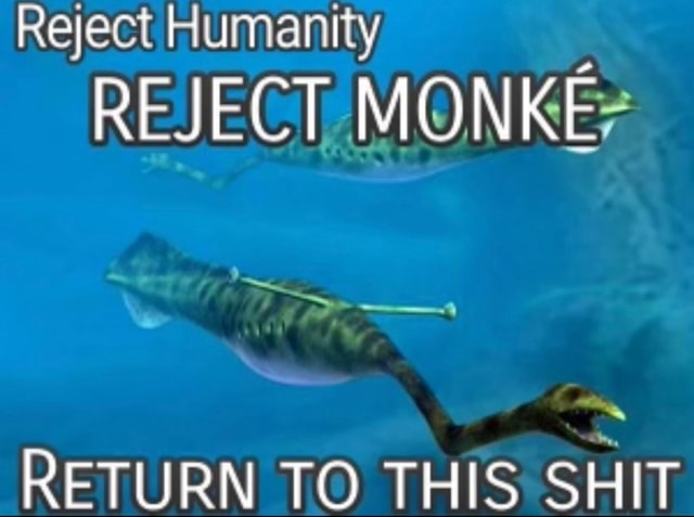 Reject Humanity REJECT MONKE RETURN TO THIS SHIT memes