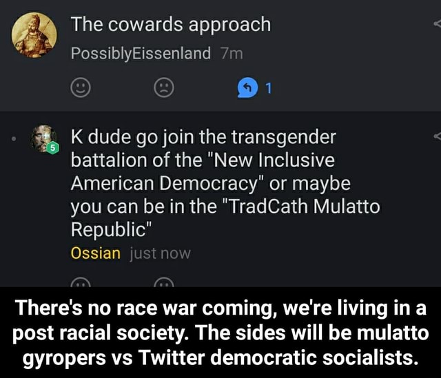 The cowards approach PossiblyEissenland K dude go join the transgender battalion of the New Inclusive American Democracy or maybe you can be in the TradCath Mulatto Republic Ossian There's no race war coming, we're living ina post racial society. The sides will be mulatto gyropers vs Twitter democratic socialists.  There's no race war coming, we're living in a post racial society. The sides will be mulatto gyropers vs Twitter democratic socialists memes