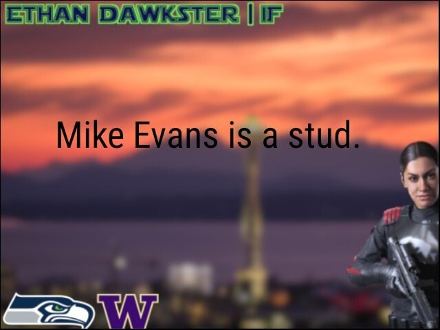 ETHANIDAWKSTER II Mike Evans is a stud meme