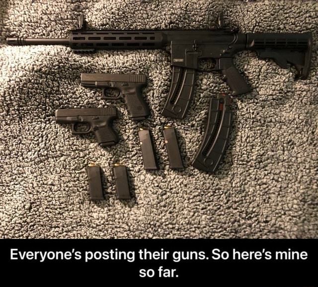 Everyone's posting their guns. So here's mine so far. Everyone's posting their guns. So here's mine so far memes