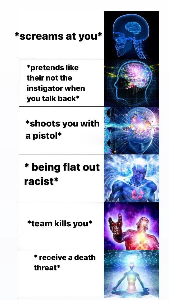 *screams at you* *pretends like their not the instigator when you talk back* *shoots you with a pistol* * being flat out racist* *team kills you* * receive a death threat* memes