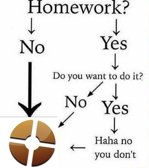 Homework { { No Yes Do you do it Yes no you do not memes